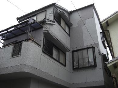 hasimototei3.JPG